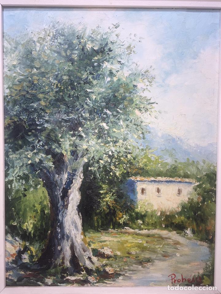 Arte: Óleo sobre tela de Onofre Prohens - Foto 3 - 145703696