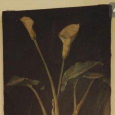 Arte: ÓLEO 1901 ANSELMO GASCÓN DE GOTOR. Lote 147231766