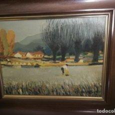 Arte: CUADRO CLAPERA MAYA, D'OLOT. Lote 147319826
