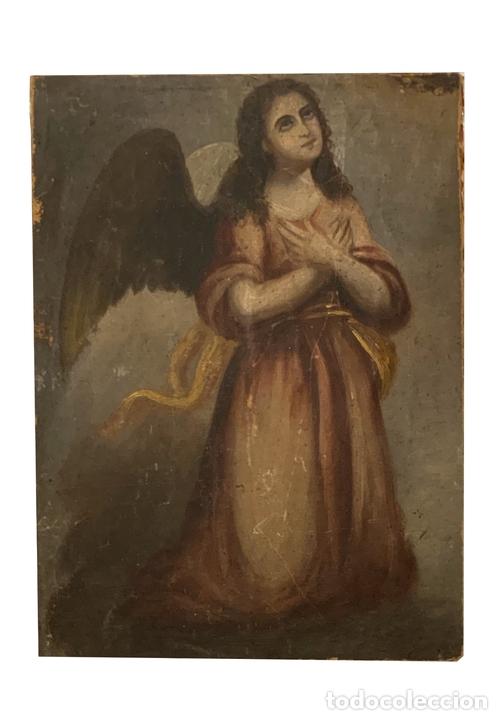 MARAVILLOSO ANGEL , SIGLO XVIII, LIENZO SOBRE TABLA. (Arte - Pintura - Pintura al Óleo Antigua siglo XVIII)