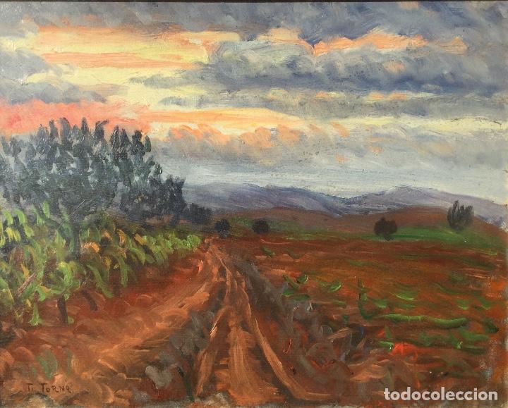ÓLEO CON PAISAJE DE TRINITAT TORNÉ PUJOL (BARCELONA 1879-1945) (Arte - Pintura - Pintura al Óleo Moderna siglo XIX)