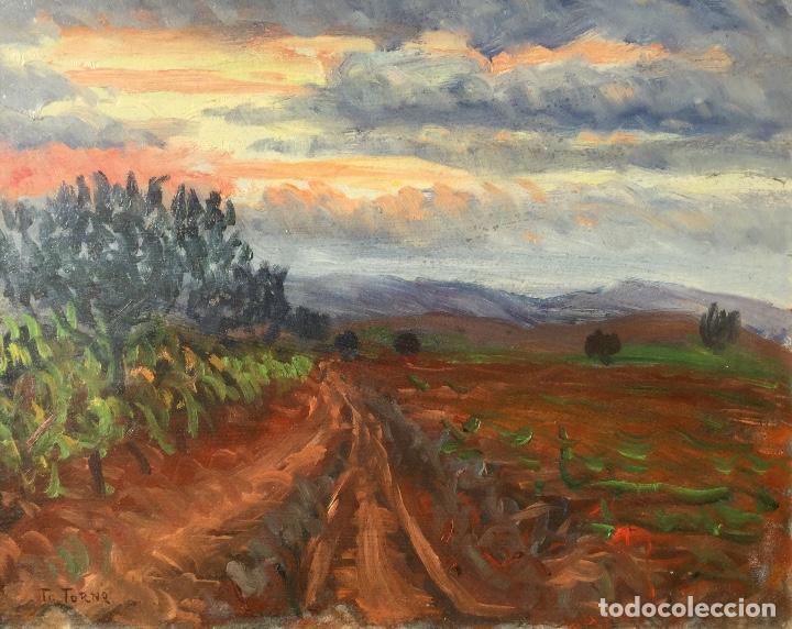 Arte: Óleo con paisaje de TRINITAT TORNÉ PUJOL (Barcelona 1879-1945) - Foto 2 - 147734990