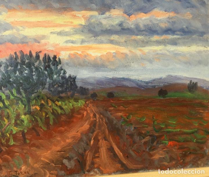 Arte: Óleo con paisaje de TRINITAT TORNÉ PUJOL (Barcelona 1879-1945) - Foto 3 - 147734990