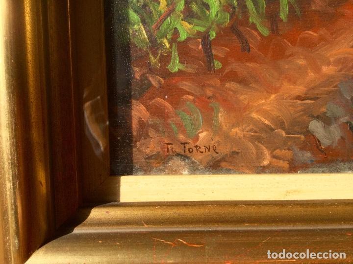 Arte: Óleo con paisaje de TRINITAT TORNÉ PUJOL (Barcelona 1879-1945) - Foto 5 - 147734990
