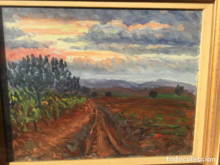 Arte: Óleo con paisaje de TRINITAT TORNÉ PUJOL (Barcelona 1879-1945) - Foto 7 - 147734990