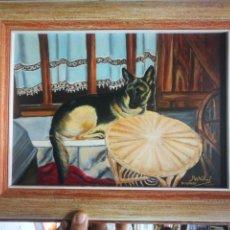 Arte: OLEO PERRO PASTOR ALEMAN , FIRMADO MARIBEL DICIEMBRE 2002.EL LIENZO TIENE UN.PEQUEÑO ROTO. Lote 148968586