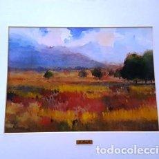 Arte: PINTURA ACUARELA - CAM P DE ALT AMPURDA - ANY 1981 - DE - JOSEP MARFA GUARRO - BARCELONA -. Lote 151464922