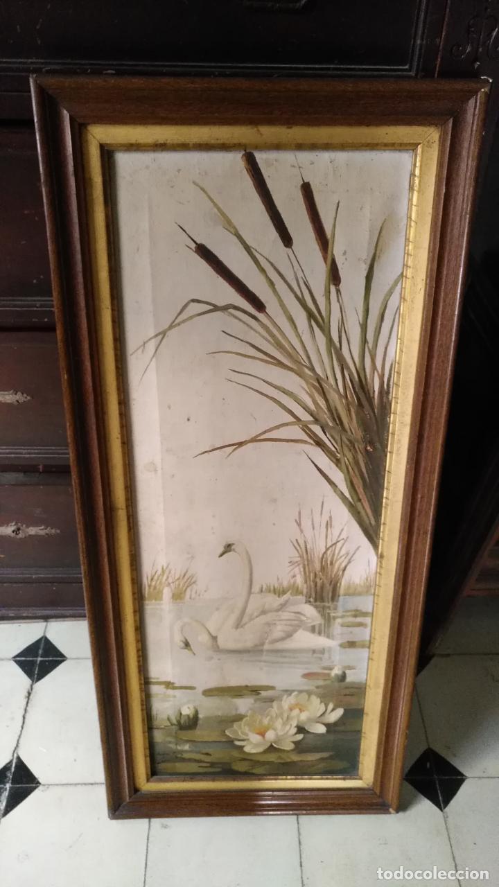 Arte: gran lienzo oleo CISNE enmarcado marco madera y contramarco pan de oro fino firmado 1909 sofia ruiz - Foto 3 - 152136418
