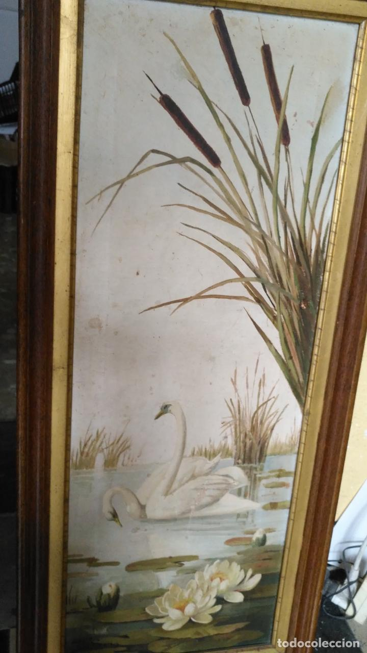 Arte: gran lienzo oleo CISNE enmarcado marco madera y contramarco pan de oro fino firmado 1909 sofia ruiz - Foto 11 - 152136418