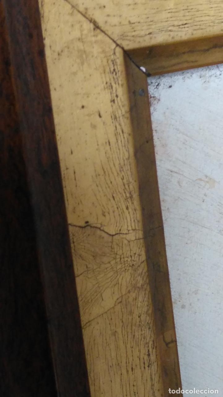 Arte: gran lienzo oleo CISNE enmarcado marco madera y contramarco pan de oro fino firmado 1909 sofia ruiz - Foto 12 - 152136418