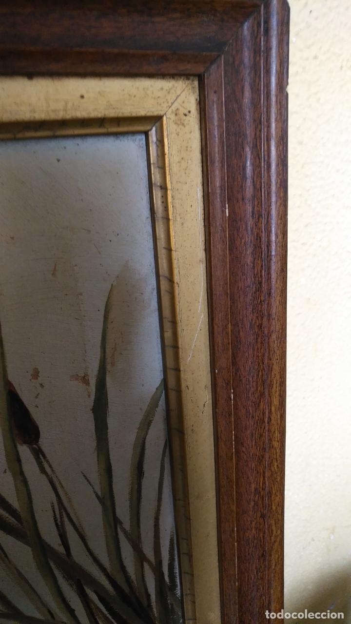Arte: gran lienzo oleo CISNE enmarcado marco madera y contramarco pan de oro fino firmado 1909 sofia ruiz - Foto 15 - 152136418