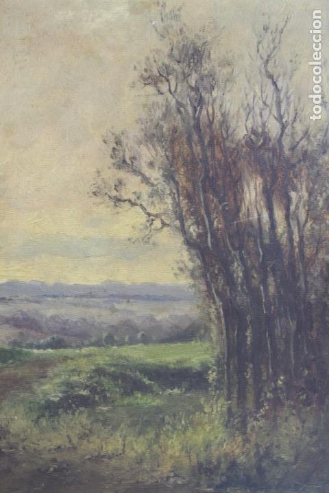 Arte: Paisaje, posiblemente los alrededores de Madrid, pintura al óleo sobre madera, firma ilegible. - Foto 2 - 153199226