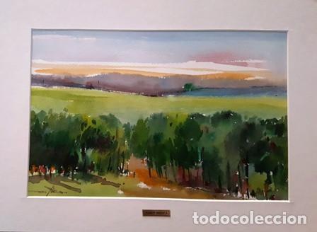 CUADRO - PINTURA ACUARELA - ALT AMPURDA - JOSEP MARFA GUARRO - BARCELONA - AÑO 2007 - (Arte - Pintura Directa del Autor)