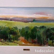 Arte: CUADRO - PINTURA ACUARELA - ALT AMPURDA - JOSEP MARFA GUARRO - BARCELONA - AÑO 2007 -. Lote 154291066
