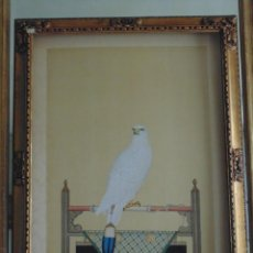 Arte: IMPORTANTE PINTURA SIGLO XVIII, ENTORNO DE GIUSEPPE CASTIGLIONE (CHINA), HALCÓN BLANCO. Lote 139296086