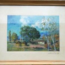 Art: PAISAJE DE LA VALL D´EN BAS / LA GARROTXA --- OLEO DE JOSEP BADIA LLORET ( 1906 - 1983 ). Lote 159276754