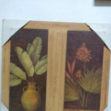 Arte: PLANTAS. GRABADO SOBRE TABLA. 60 X 60 CM. Lote 159577486