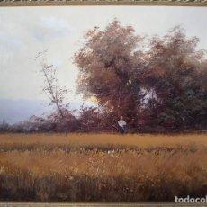 Arte: OLEO DE JOAN CASELLAS. Lote 161318626