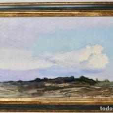 Arte: PAISAJE - ÓLEO SOBRE TELA - FIRMA ILEGIBLE. Lote 161990498