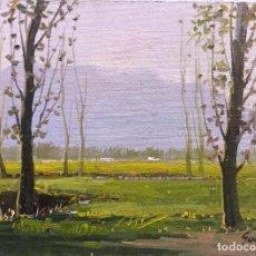 Arte: ANTONI SADURNI (1927-2014). Lote 166257302
