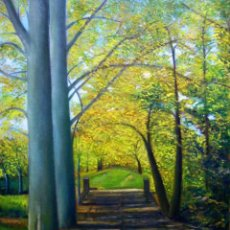 Arte - Camí del Montseny 3 - Mateu Pujadas - 46 x 38 cm - 166649434