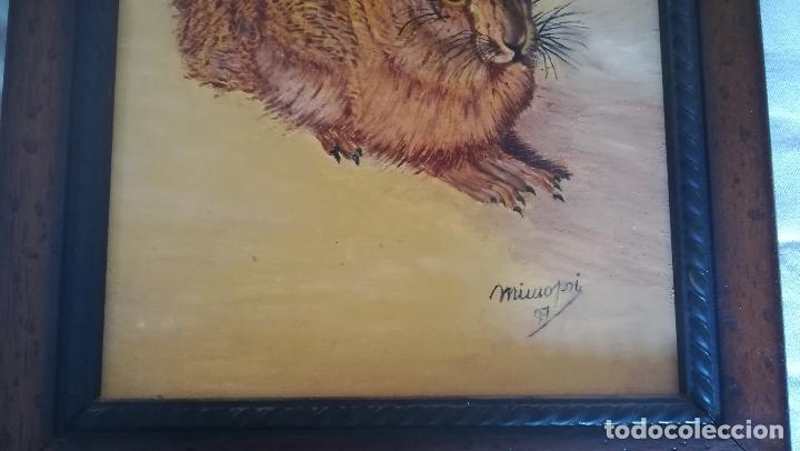 Arte: Cuadro de Obra original - Pintura a Oleo de Liebre Campo - Autor - Mimopri- Miguel Molero-Firmada y - Foto 2 - 166953900