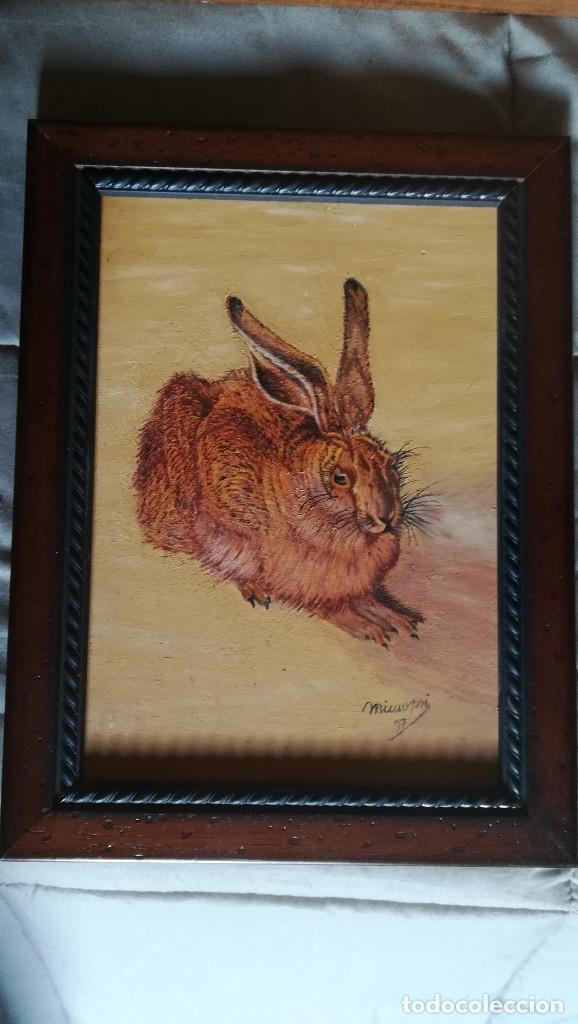 Arte: Cuadro de Obra original - Pintura a Oleo de Liebre Campo - Autor - Mimopri- Miguel Molero-Firmada y - Foto 4 - 166953900