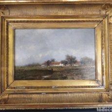 Arte: REMIGIUS ADRIANUS VAN HAANEN. S. XIX. ÓLEO SOBRE MADERA.. Lote 167054365