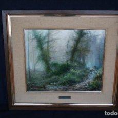 Arte: PERE COLLDECARRERA, OLEO/LIENZO, LA MOIXINA, OLOT. FIRMADO Y TITULADO. 45,5 X 38. CTM. Lote 167168016