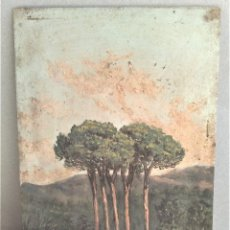 Arte: ANONIMO. Lote 167559924