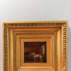 Arte: OLEO SOBRE TABLA, GALGOS, MARCO DORADO. Lote 169000396