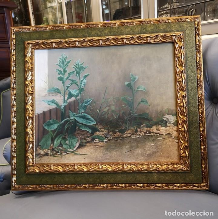 ÓLEO PLANTAS SILVESTRES (Arte - Pintura Directa del Autor)