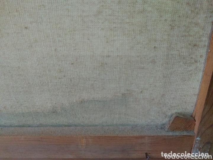 Arte: ÓLEO EN LIENZO ( FIRMADO FRANCISCO RIVERA ) FIRMADO . VER FOTOGRAFÍAS, MÁS CUADROS EN MÍ PERFIL. - Foto 25 - 174183542