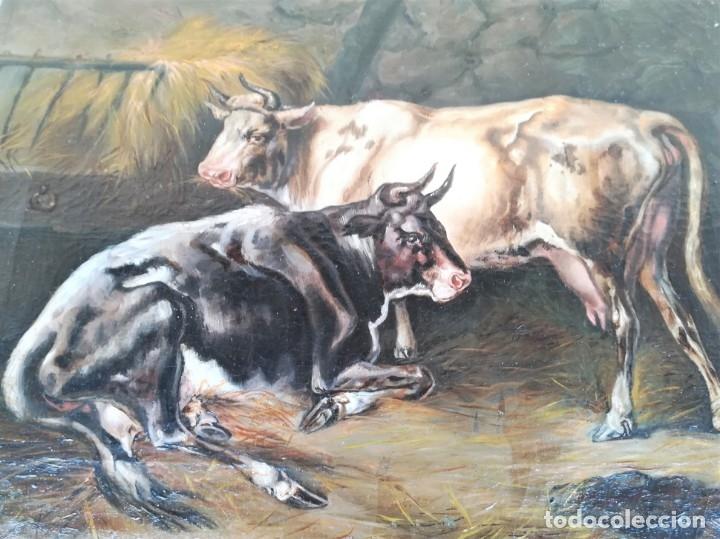 Arte: PINTURA AL OLEO BRITANICA SIGLO XIX,GANADO EN ESTABLO,FIRMADO G.WEBILL,TORO-BUEY,EPOCA VICTORIANA - Foto 12 - 174630348