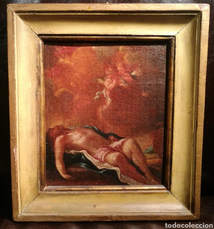 CRISTO MUERTO. ESCUELA ITALIANA DEL S.XVI. (Arte - Pintura - Pintura al Óleo Antigua siglo XVI)