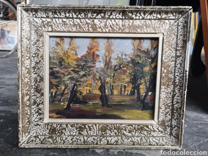 Arte: Pintura Fauvista, oleo sobre tablex, buena calidad. Firma ilegible, B.P.....? primera mitad s.XX, - Foto 2 - 176751755