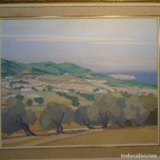 Arte: GRAN ÓLEO SOBRE TELA DE FRANCESC D'ASSIS CASADEMONT.CAMPS DE SANT AGUSTI (IBIZA)1975.EXCELENTE OBRA.. Lote 178389480