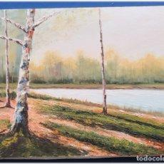 Arte: PINTURA AL OLEO SOBRE LIENZO 27X35. Lote 178689840