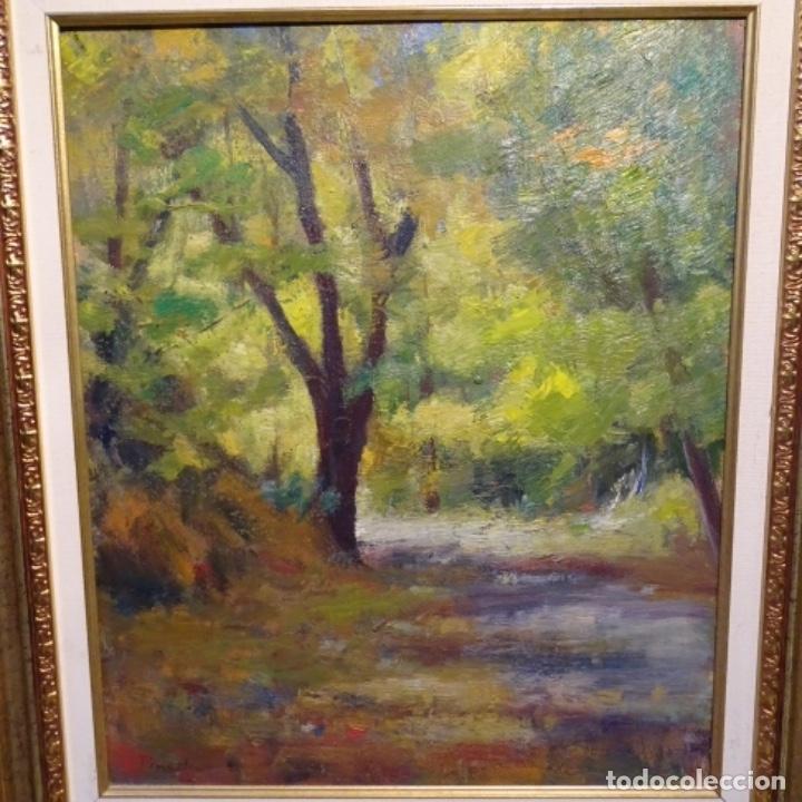 OLEO SOBRE TELA DE ANTONIO PINEDA SALMERON(MOTRIL1953).TEMA DE OTOÑO.BIEN ENMARCADO. (Arte - Pintura - Pintura al Óleo Contemporánea )