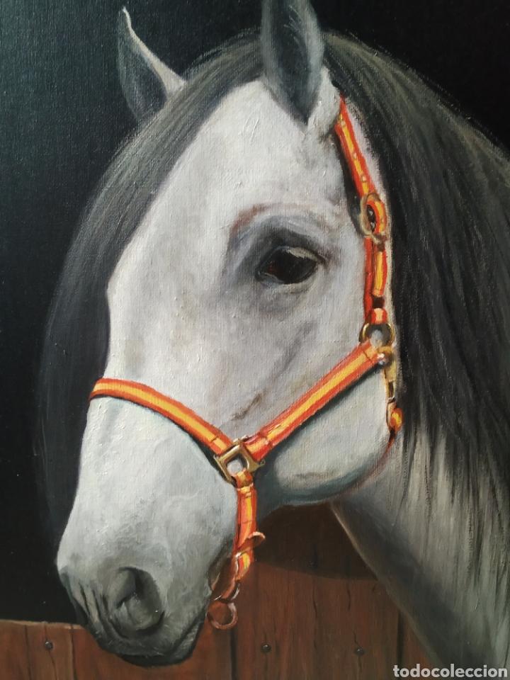 Arte: Óleo sobre lienzo. Caballo de 61x46 - Foto 3 - 181166142