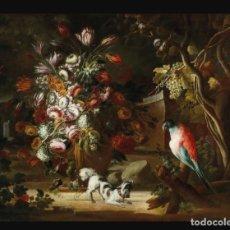 Arte: ESCUELA DEL NORTE DE ITALIA, ALREDEDOR DE 1700. BODEGÓN DE FLORES Y FRUTOS CON UN PERRO Y UN LORO. Lote 166614181