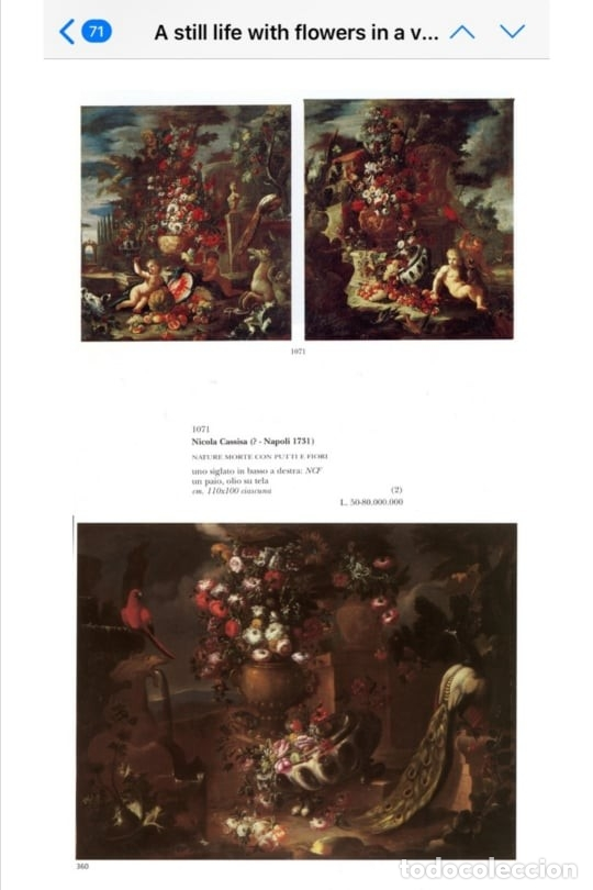 Arte: Escuela del Norte de Italia, alrededor de 1700. Bodegón de flores y frutos con un perro y un loro - Foto 7 - 166614181