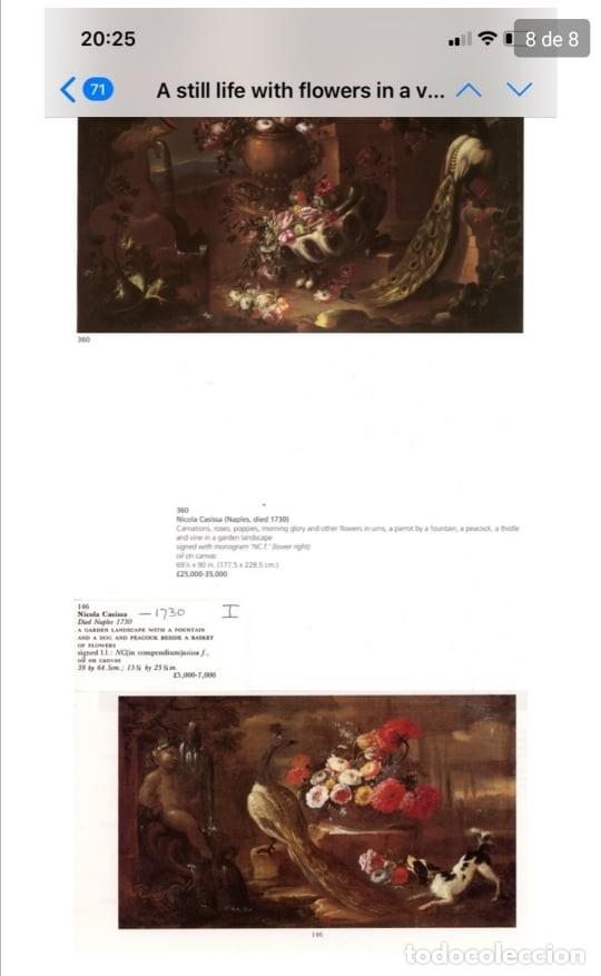 Arte: Escuela del Norte de Italia, alrededor de 1700. Bodegón de flores y frutos con un perro y un loro - Foto 9 - 166614181