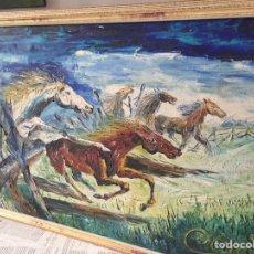 Arte: GRAN ÓLEO CABALLOS A ESPÁTULA FIRMADO CANO. Lote 184801535