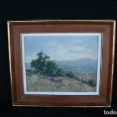 Arte: MANUEL SAGNIER (1891 - 1976) BONITO OLEO SOBRE TABLEX. FIRMADO. Lote 188810617