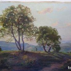 Arte: ÓLEO SOBRE TELA DE ISIDRE ODENA.BUEN JUEGO DE LUZ.. Lote 189445723