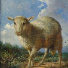 Arte: JULIO BORRELL (1877-1957) ÓLEO SOBRE LIENZO CORDERO. Lote 190286842