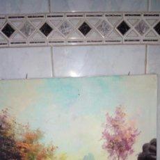 Arte: CUADRO OLEO SOBRE LIENZO, FIRMADO.. Lote 190611607