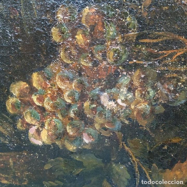 Arte: GRAN BODEGÓN CON FLORES Y PÁJAROS. ÓLEO SOBRE LIENZO. ESCUELA ROMANA. ITALIA. XVII - Foto 26 - 191465488