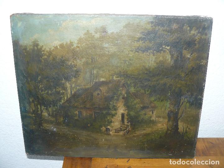 OLEO SOBRE TELA . FIRMA ILEGIBLE - LA CASA DEL BOSQUE (Arte - Pintura - Pintura al Óleo Moderna sin fecha definida)